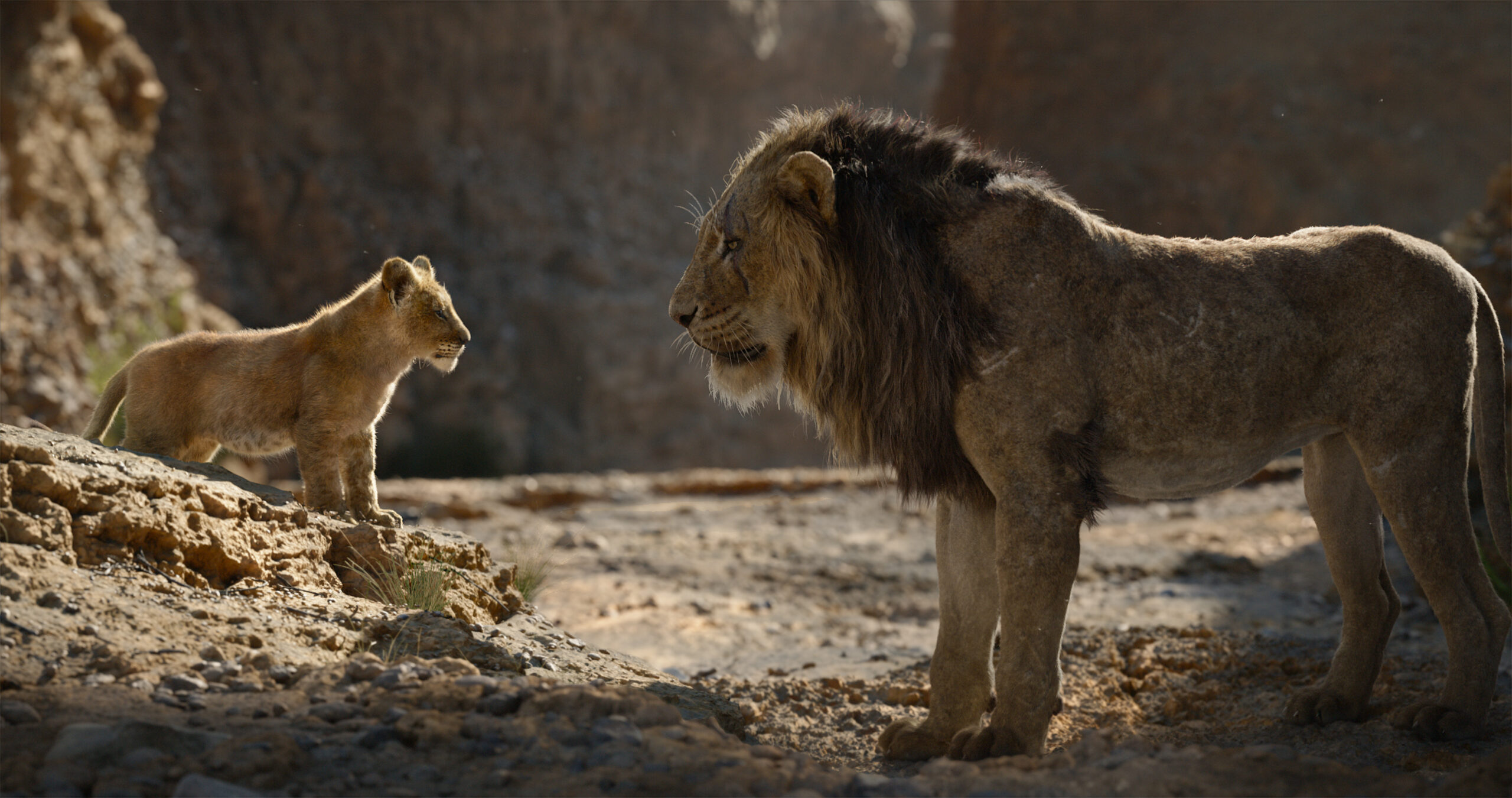 Is The Lion King Appropriate for Young Children?